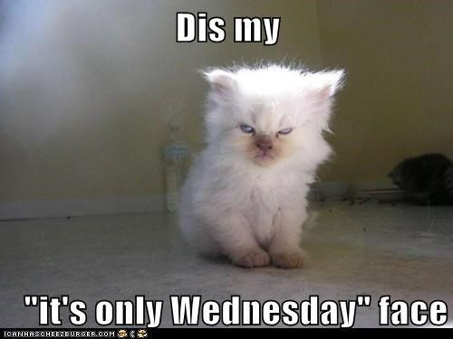 Wednesday Face confessions life by nadine lynn